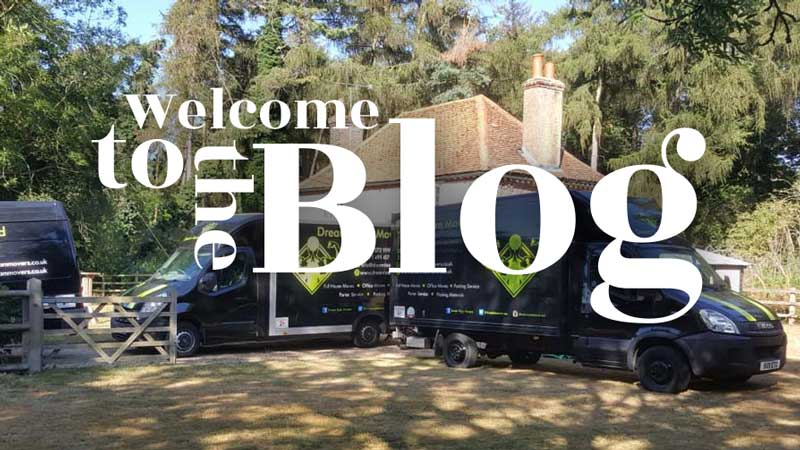 Welcome to the Dream Team blog!